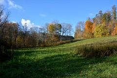 Mid October Autumn Landscape (thoeflich) Tags: autumn fall fallcolors autumnleaves autumncolors marietta churchtown falllandscape autumnlandscape