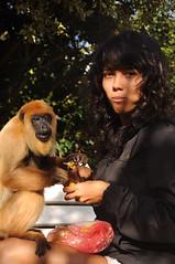 (bereh!) Tags: portrait naturaleza cute love nature beauty outdoors monkey mono eating retrato amor natureza comida selva bolivia mona super eat human amour portraiture macaco lovely ritratto liebe fofas comiendo ecuadorian
