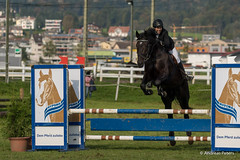 DSC06513_s (AndiP66) Tags: horse oktober macro sports sport schweiz switzerland mark sony luzern sp ii di if alpha tamron concours 77 pferd 70200 equestrian derby f28 ld horsejumping 70200mm wettbewerb 2014 springen eschenbach kantonsolothurn inwil reithof springreiten cantonsolothurn stleodegar andreaspeters pferdespringen 77m2 a77ii ilca77m2 77ii slta77ii