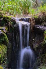 Valganna Tiny Falls (Luca C.83) Tags: nikond3200 tinywaterfall valganna cascatella