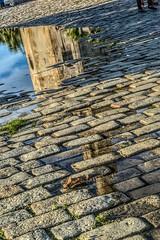 Reflejos de la torre del Oro. (MariaRP91) Tags: reflection lluvia sevilla nikon torre foto camino seville reflejo reflejos piedras suelo charco torredeloro principiante nikond3100 principiantesevilla