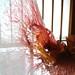 中之条ビエンナーレ2013 寺村サチコ/NAKANOJO BIENNALE 2013 Sachiko Teramura