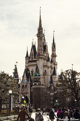 Disneyland (Federica.Villani) Tags: holiday tokyo dream giappone vacanza 2014