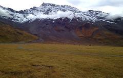 Engstligenalp (Iris_14) Tags: nature berg montagne automne switzerland suisse herbst schweitz berneroberland adelboden wildstrubel engstligenalp