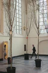 "Witteveen en Bos  prijs voor Geert Jan Hobijn copy • <a style=""font-size:0.8em;"" href=""http://www.flickr.com/photos/31503961@N02/15574412308/"" target=""_blank"">View on Flickr</a>"