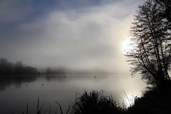 Mist (rogermarcel) Tags: bw mist sunrise river rivire nb brume waterscape rogermarcel