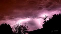 Lightning 05