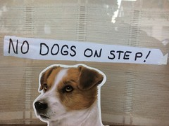 No Dogs on Step (silverfuture) Tags: picmonkey:app=editor