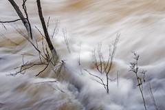 Stand straight..! (Birgit F) Tags: autumn fall norway waterfall flood rapids slowshutter foss vann hst arendal flom austagder vassdrag assev stampefoss