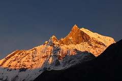coucher soleil Macchappuchare mbc (C//K) Tags: nepal sunset trek ma himalaya sanctuary machapuchare anapurnna