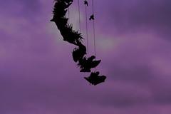 wind (a-md) Tags: silhouette dark purple bokeh magenta purplesky