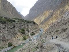 Colca Canyon-27