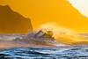 gold·en II (IanLudwig) Tags: canon photography hawaii kauai hawaiian beaches tog togs niksoftware hawaiiphotos vsco cep4 canon5dmkiii hawaiianphotography 5dmkiii canon5dmarkiii ianludwig canon70200mmf28lisusmii lightroom5 canon2xtciii adobephotoshopcc
