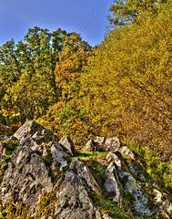 Paisaje otoñal - Autumn