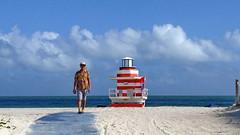 Miami Beach and Surround