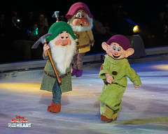 Snow White and the Seven Dwarfs (DDB Photography) Tags: disney disneyonice ice waltdisney disneyphoto disneypictures disneycharacters dreambig mickey mickeymouse minnie minniemouse mouse feld feldentertainment donaldduck duck goofy figure skate figureskate show iceshow prince princess princesses castle animation disneymovie movie animatedmovie fairytale story rogerscentre rogers skydome toronto ontario canada snowwhite snowprince doc grumpy happy sleepy bashful sneezy dopey