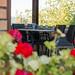 sancarlo_agriturismo_ristorante_toscana
