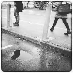 Day 58 -pondering (DenisePhoto1) Tags: pavement rain wet footsteps pondering beloved puddle blackandwhite rainyday february365 february photoadayproject photoadaychallenge photoaday project365 365challenge 365project 365photo 365 58365 day58