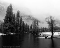 Winter Storm, Yosemite National Park (4 Corners Photo) Tags: 4cornersphoto blackandwhite california clouds cold conifer fog forest geology landscape mariposacounty mercedriver mist monochrome mountains northamerica profilecliff rural scenery sierranevada sky snow storm taftpoint tree unitedstates water weather winter yosemitenationalpark yosemitevalley us