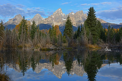 Dam View 😂 - Beaver Dam and Teton Reflection - 1790b+ (teagden) Tags: grand teton mountains reflection tetonsreflection jenniferhall jenhall jenhallphotography jenhallwildlifephotography landscape landscapephotography scenic grandtetonnationalpark grandtetons grandteton schwabachers landing schwabacher gtnp beaver dam wyoming fall autumn water waterreflection damview