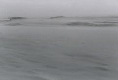 Råberg Mile (Jan Meifert) Tags: agfa agfaphoto apx 400 analogue analog 35mm bw sw film bokeh desert wüste sand dune düne skagen nordjylland wind windy windig visit danmark denmark dänemark jan meifert