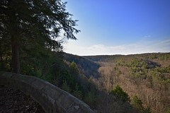 Mohican Overlook 1 (tim.perdue) Tags: overlook mohican state park forest gorge clear fork river trees sky clouds branches stone terrace view panorama wide angle sunlight shadows wall