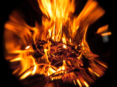...don't give up... (carbumba) Tags: twig burn flame orange ignite blackbackground hot heat blur closeup macro fireplace bright wow interesting yellow fire