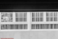 WINDOW VIEW-ROLLER BLIND-Madrid (FRANCISCO DE BORJA SÁNCHEZ OSSORIO) Tags: rollerblind window love light luz lovely life amor arrow flechazo passion pasión primavera spring summer shot slowtimeexposure verano vida ventana divertido invierno winter autumn otoño color colour bokeh focuspoint focus foco composition composición colourtemperature timeexposure tiempodeexposición tripod temperaturadecolor delicado delicate disparo desenfoque details detail detalle detalles dof depthoffield nature naturaleza nice clock clockdetail swissmade swiss photo