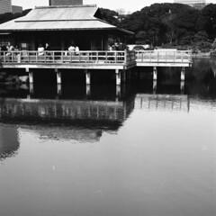 170305_ZenzaBronicaS2_006 (Matsui Hiroyuki) Tags: zenzabronicas2 nikonnikkorp75mmf28 fujifilmneopan100acros epsongtx8203200dpi
