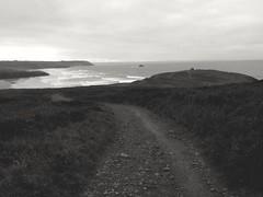 Marchons  ensemble.. Let's walk together... (alainpere407) Tags: alainpere bretagne bretagneennoiretblanc breizh brittany sea oceanatlantique atlanticocean cliffs falaises presquîledecrozon