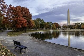 The Colors of Washington, D.C.