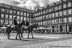 Plaza Mayor, Madrid (Marco Carbone Photography) Tags: madrid spain horses bianconero blackandwhite architecture architettura travel strada piazza plaza photography photooftheday nikon d750 europe estate turismo city allaperto viaggi viaggiare vacanze spagna