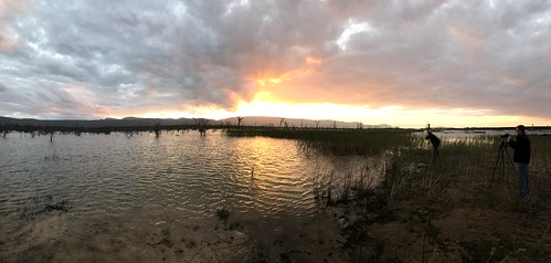 Lake Fyans sunset panorama