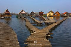 Bokod Stilt Village (fesign) Tags: bokodilake bridgebuiltstructure buildingexterior clearsky colorimage environment fisherman horizontal house fishing fishingindustry hungarianculture hungary idyllic industry lake nature outdoors panoramic path photography pier remote stiltvillage tranquilscene village water woodmaterial broadwalk