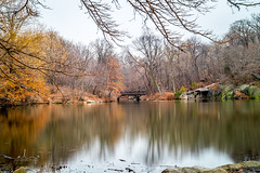 Central Park - NYC (Andy [ photography ]) Tags: centralpark nyc anlephoto