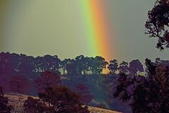 Landscape! (maginoz1) Tags: abstract art playingwithcurves colour manipulate sky landscape rainbow storm bulla melbourne victoria australia autumn april 2017 canon g3x