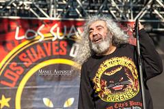 Los Suaves (Manel Amposta) Tags: barcelona zam rockfest 2014 yosi suaves manelamposta