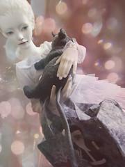 Escape_pink (tarengil) Tags: xmas pink white fashion clothing rat doll sweet bokeh sd luv dreamy bjd tulle abjd dollmore zaoll