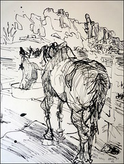 Ruby Eating (rear view) (Kerry Niemann) Tags: horse inkdrawing apachejunction
