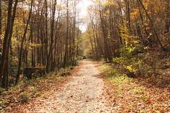 Virginia Creeper Trail 2014