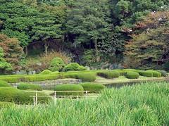 日本庭園 (beibaogo) Tags: m357 皇居東御苑(旧江戸城本丸跡)