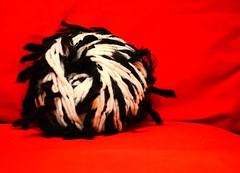 Sometimes knitting is black and white! (sifis) Tags: white black art texture knitting quality athens hobby yarn greece handknitting αθήνα sakalak μαλλιά πλέξιμο πλέκω βελόνεσ σακαλάκ sakalakwool
