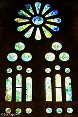 Templo de la Sagrada Familia (Eva Ceprin) Tags: barcelona espaa architecture spain arquitectura gaud sagradafamilia