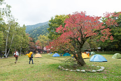 (GenJapan1986) Tags: 2014         travel japan nagano autumn  nikond600 distagont225 zf2 mountain carlzeiss