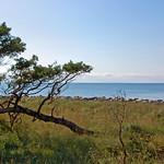 Ostseestrand bei Thiessow auf Rügen (1) thumbnail