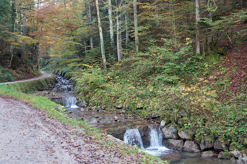 2014-10-12 Tegernsee 004 Prinzenweg, Alpbachtal