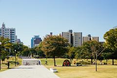 YEOUIDO HANGANG PARK (Seoul Korea) Tags: park city asian photo asia capital korea korean photograph seoul southkorea  yeouido  kpop  republicofkorea canoneos6d flickrseoul sigma2470mmf28exdghsm yeouidohangangpark