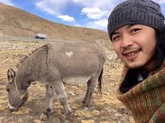 Tibet (羅 展鵬 Lo Chan Peng) Tags: art oil paint lo chan peng 羅展鵬 artist ink