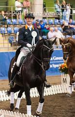 141025_2014_AUS_D_Champs_GPFS_Pres_5664.jpg (FranzVenhaus) Tags: horses performance sydney australia competition event nsw athletes aus equestrian riders dressage siec