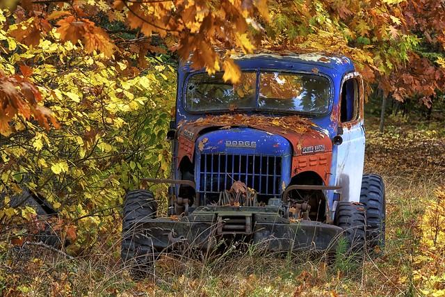 longexposure blue autumn trees ontario canada abandoned rural forest truck junk rust fallcolor 4x4 decay trail toad dodge fallenleaves northernontario fallcolours worktruck dodgetruck powerwagon dodgepowerwagon 4seconds hiltonbeach stjosephisland fujixe1 fall2014 xf55200mm